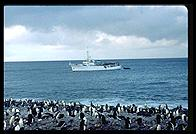 Southern Thule - Braveheart and penguins - Jan 2002