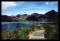 South Georgia - King Edward Point - Jan 2002