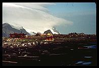 Southern Thule VP8THU camp site Jan 2002
