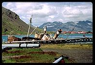 South Georgia - Grytviken Seal Boats - Jan 2002