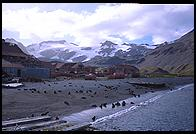 South Georgia - Stromness - Jan 2002